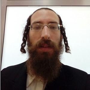 הרב דוד