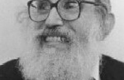 מקורותיו של הגר״א סולובייצייק בענין הרבי כמשיח